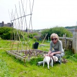 Here's Kate proudly showing off some of the beans she's grown from seed and planted at the allotment. Shelly isn't too impressed, however. Note the glorious compost bin behind her.